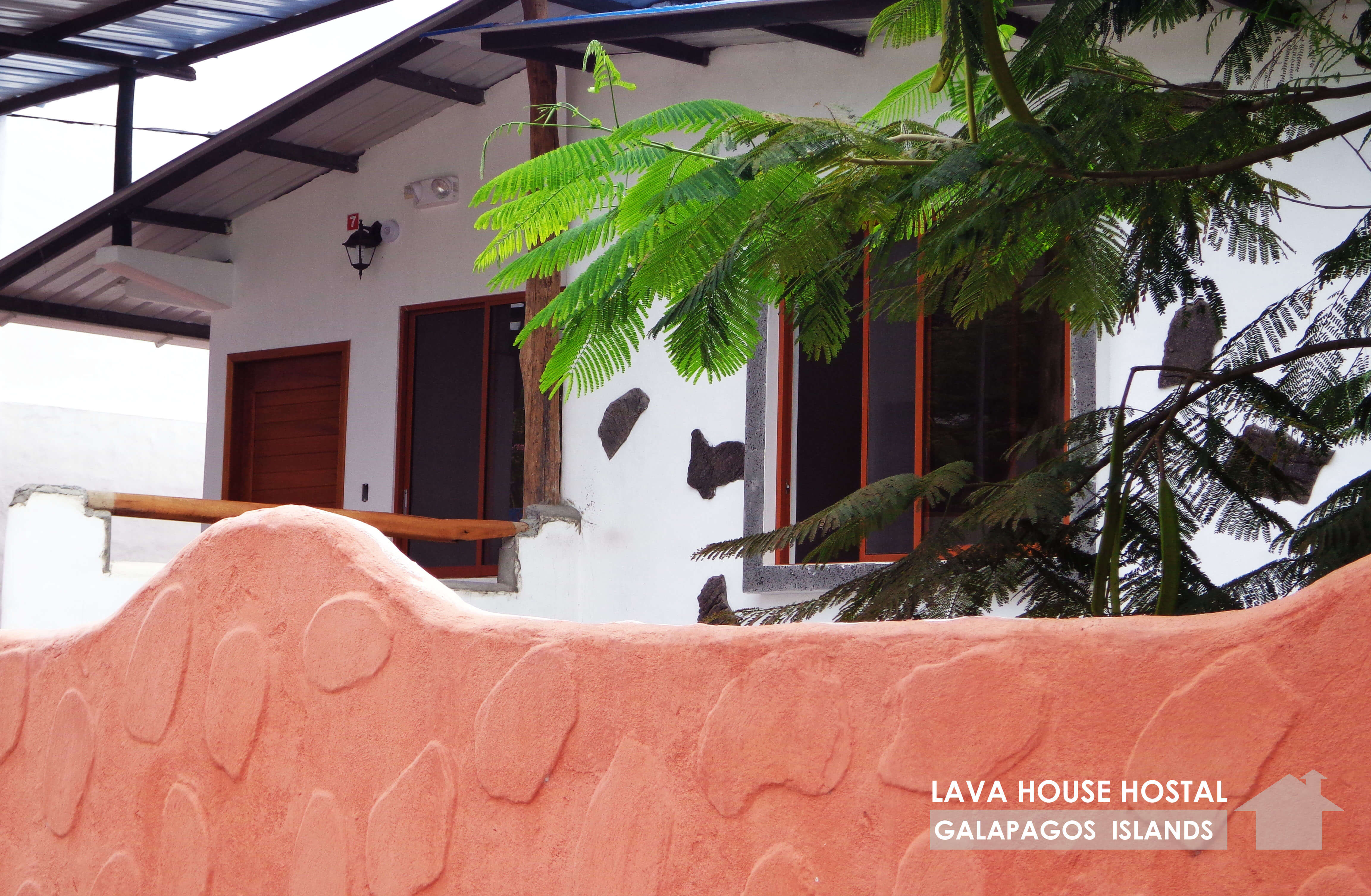 Lava House Hostal