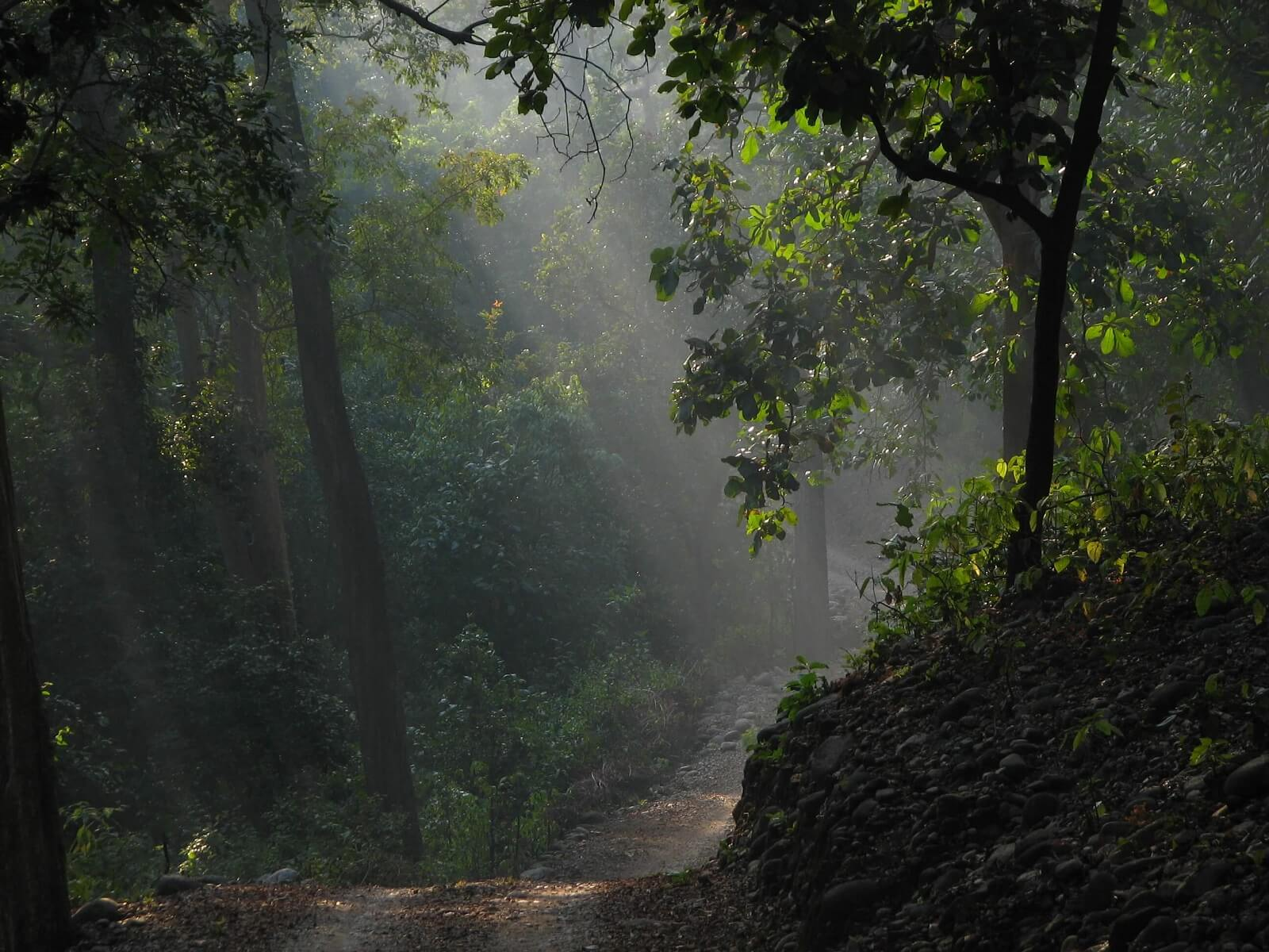 Corbett Nationalpark
