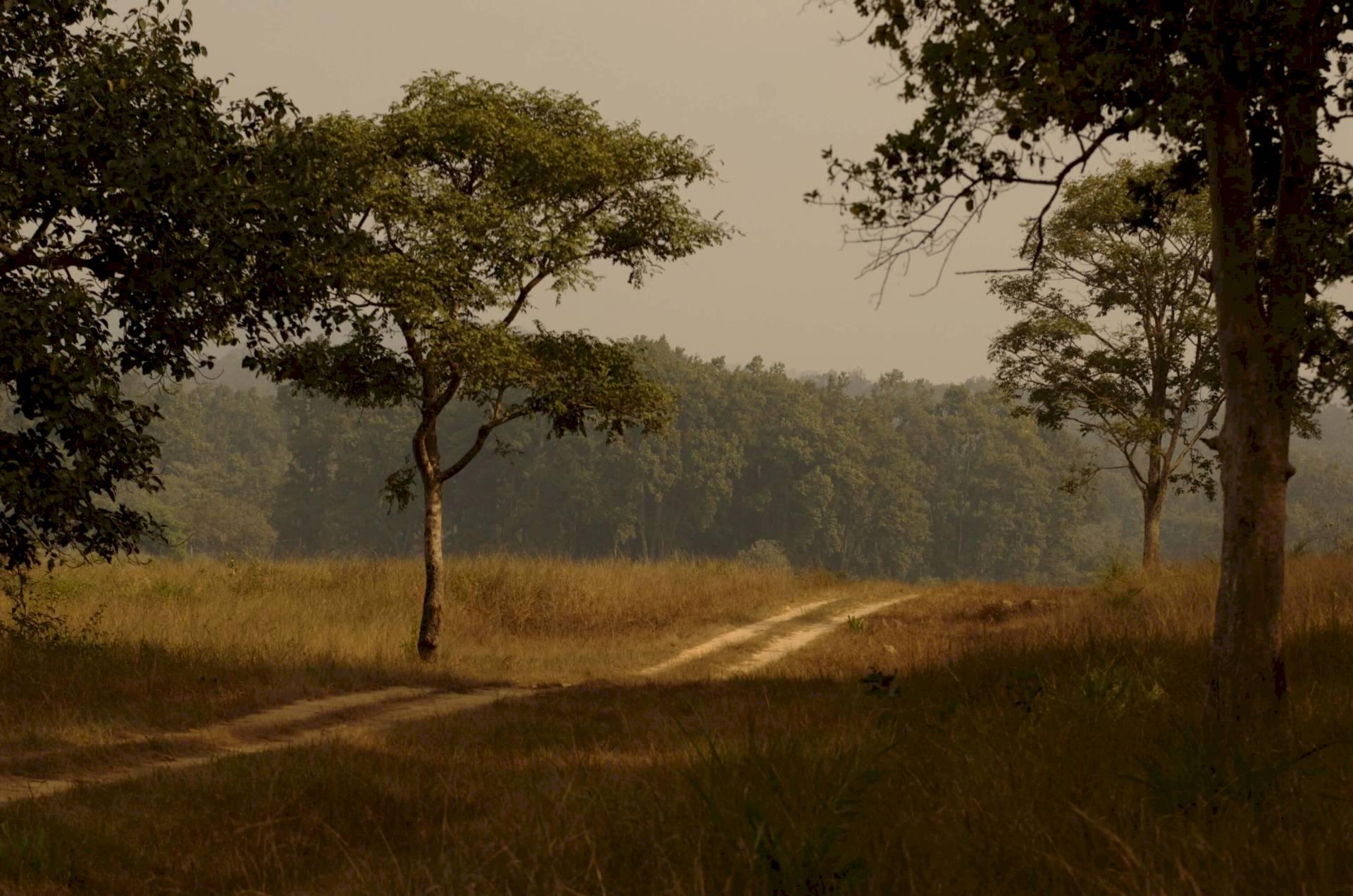 Kanha-Khatia