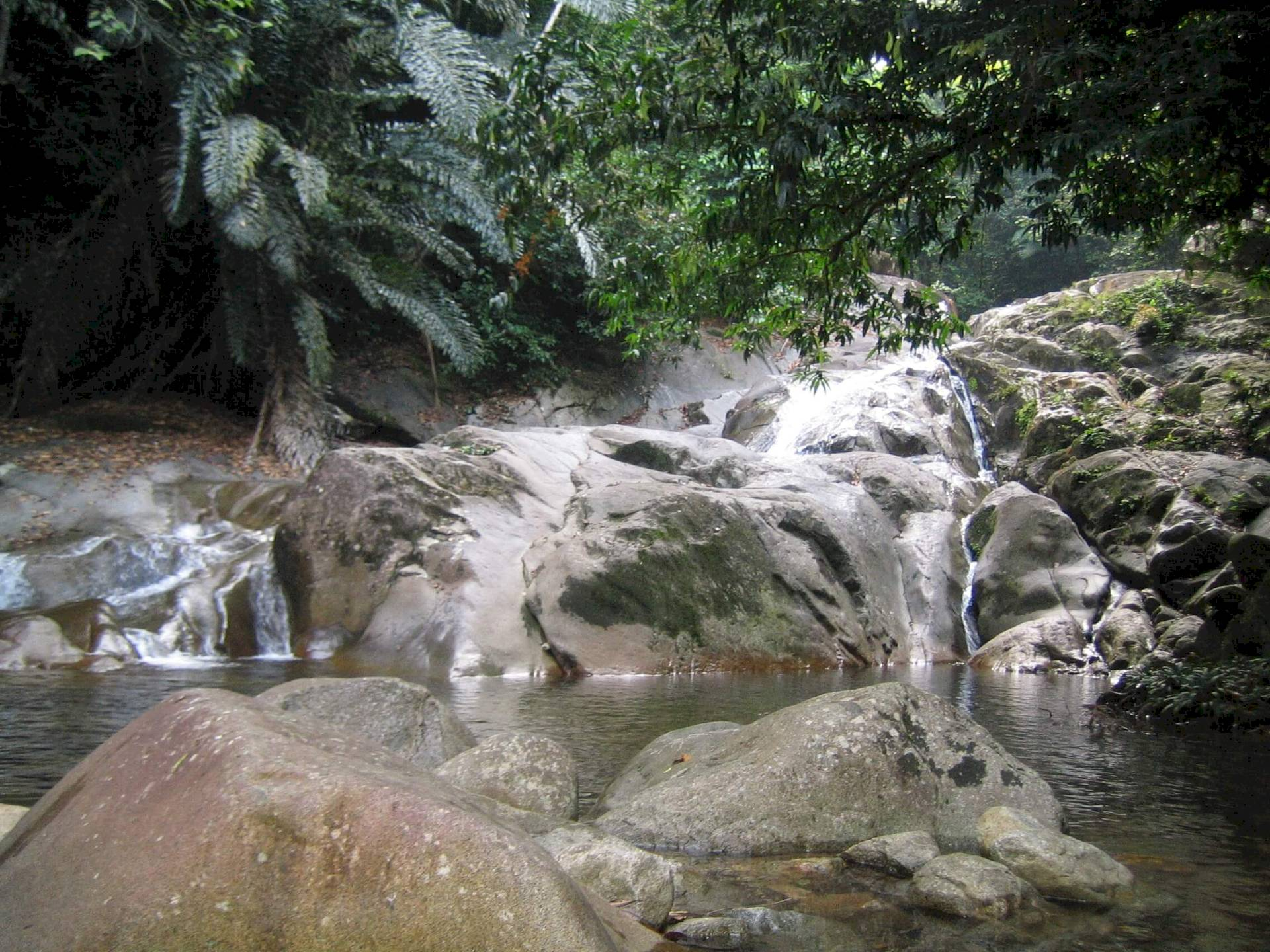 Gunung Gading-Nationalpark