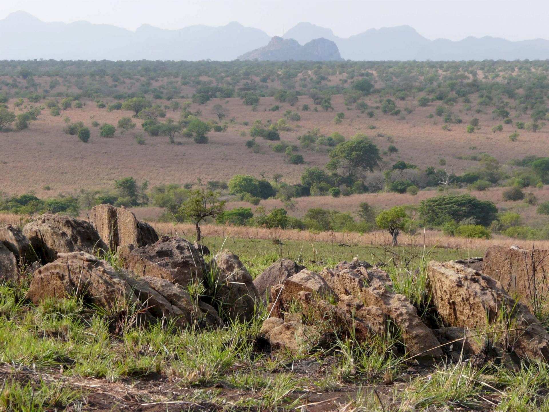 Kidepo-Nationalpark