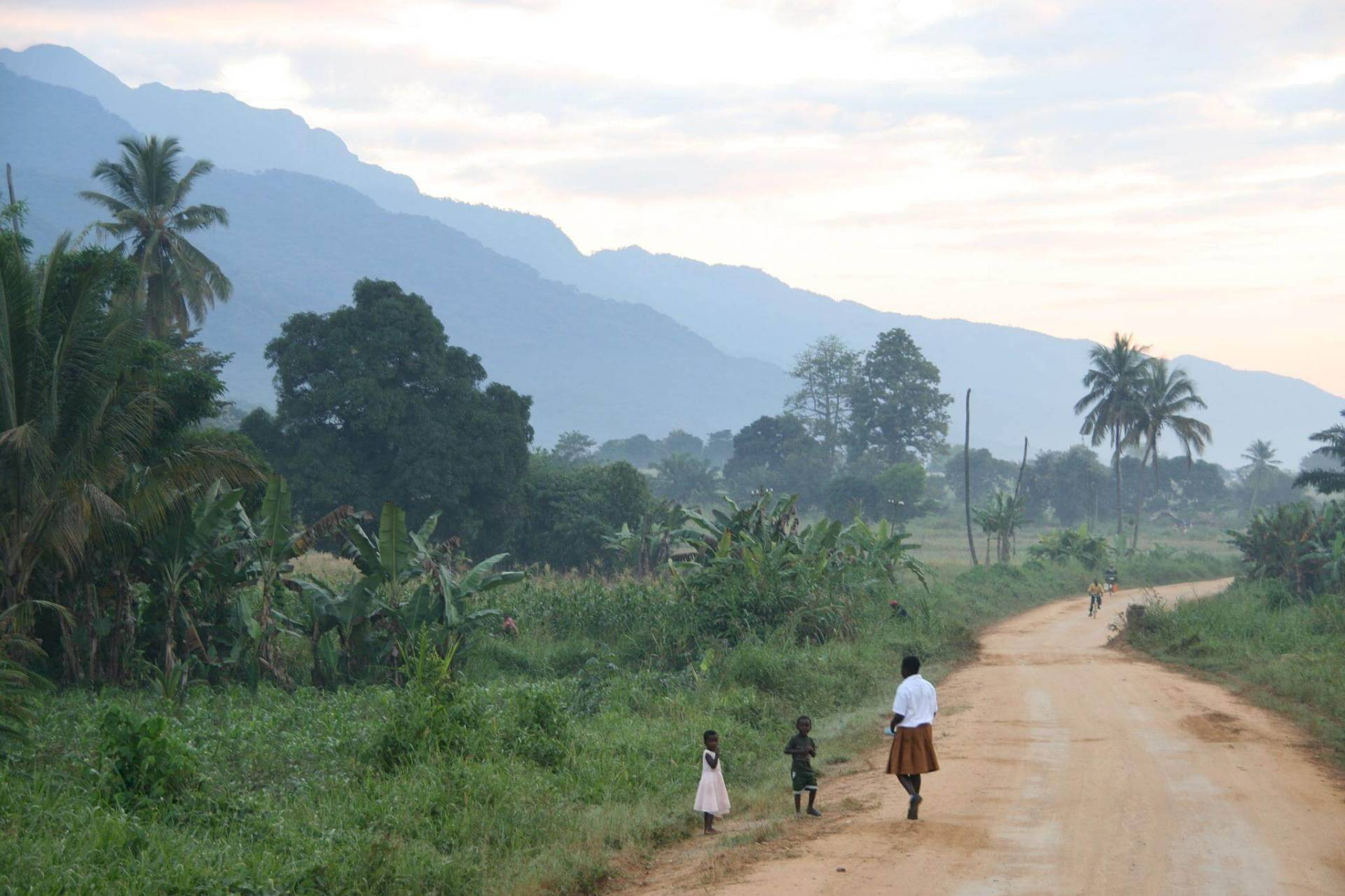 Udzungwa-Nationalpark