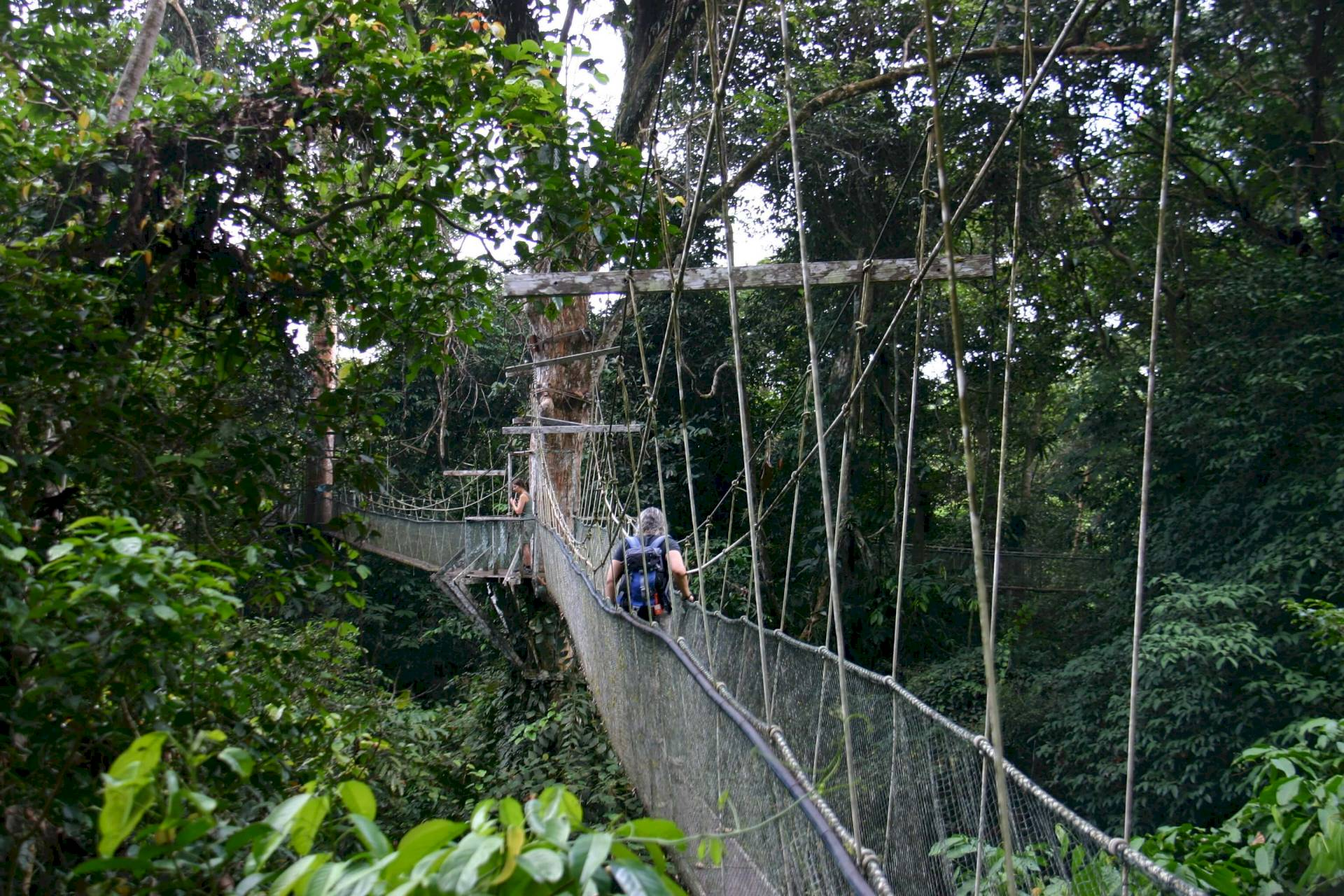 Gunung Mulu-Nationalpark