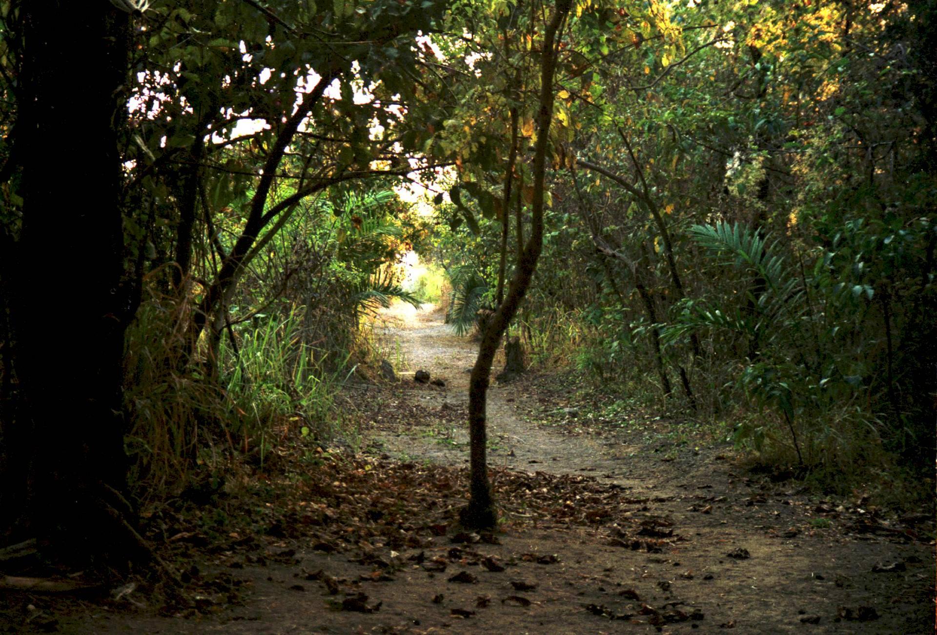Mahale-Nationalpark