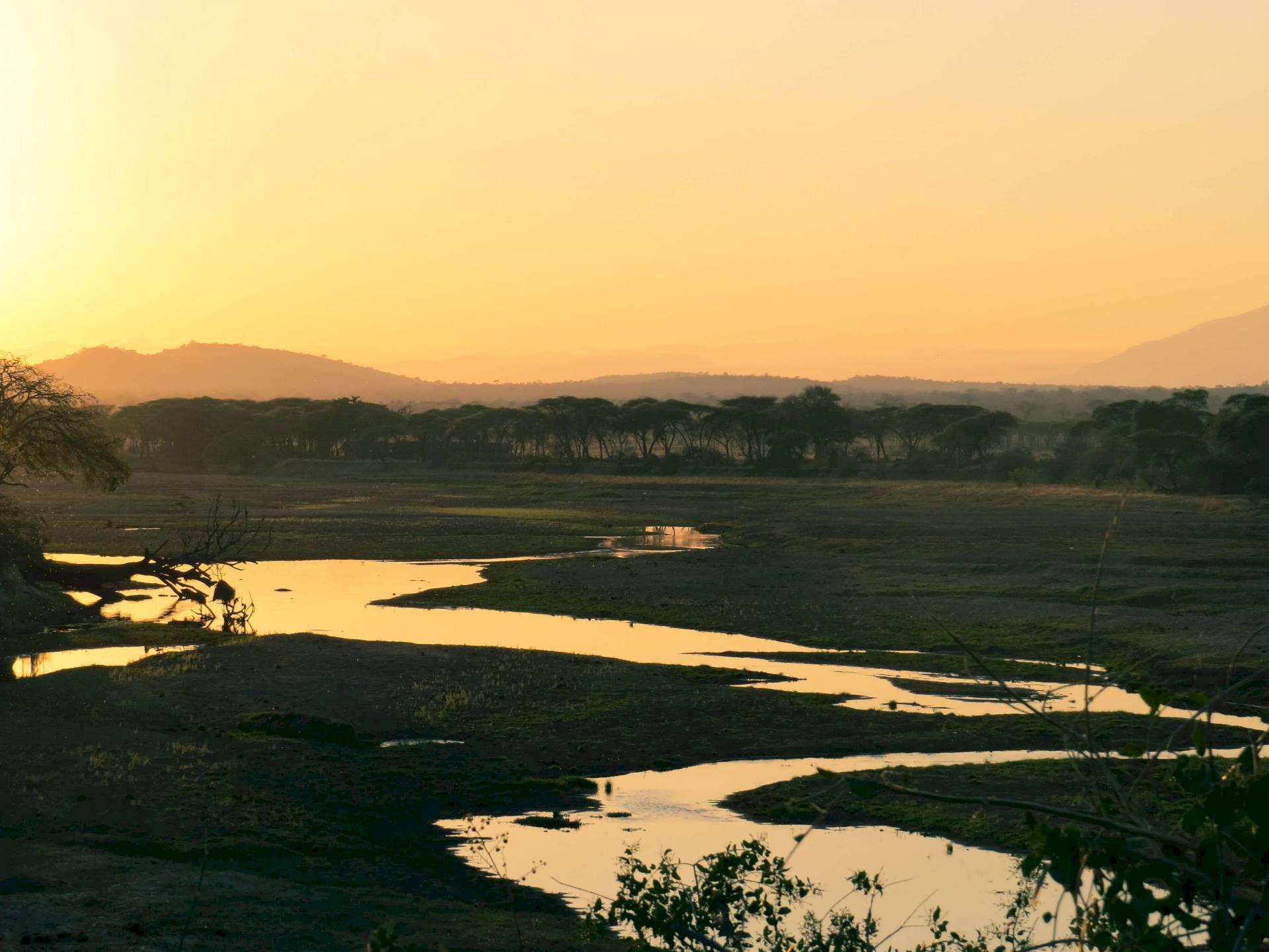 Ruaha-Nationalpark
