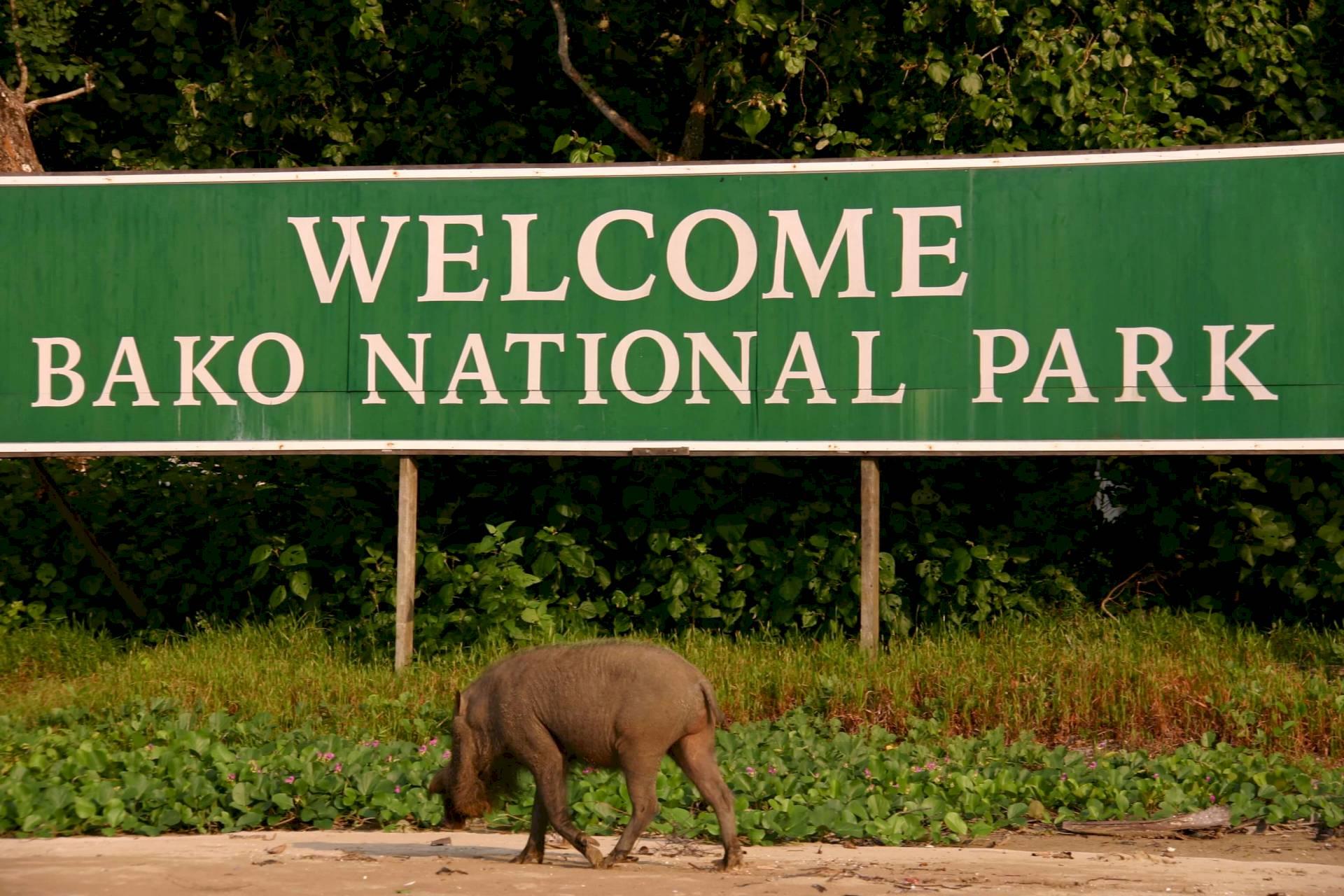 Bako-Nationalpark