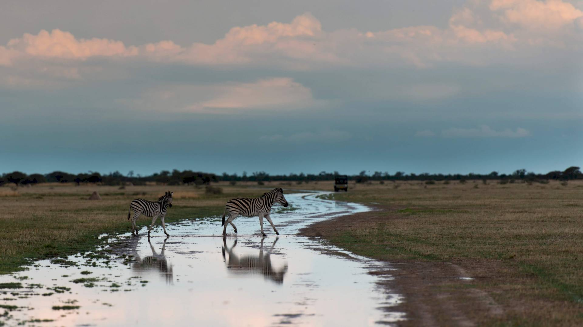 Nxai-Nationalpark