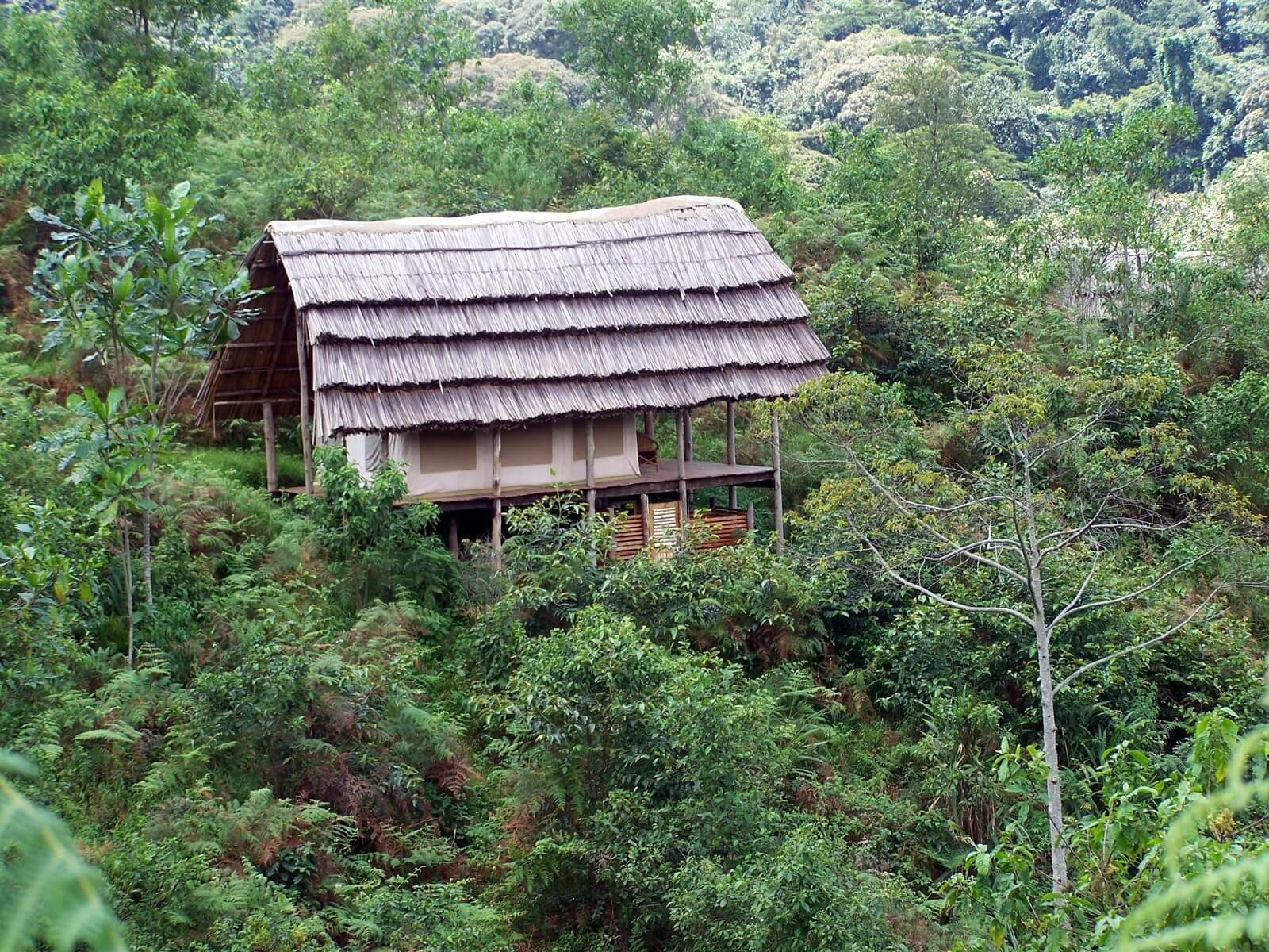 Cuckooland Lodge