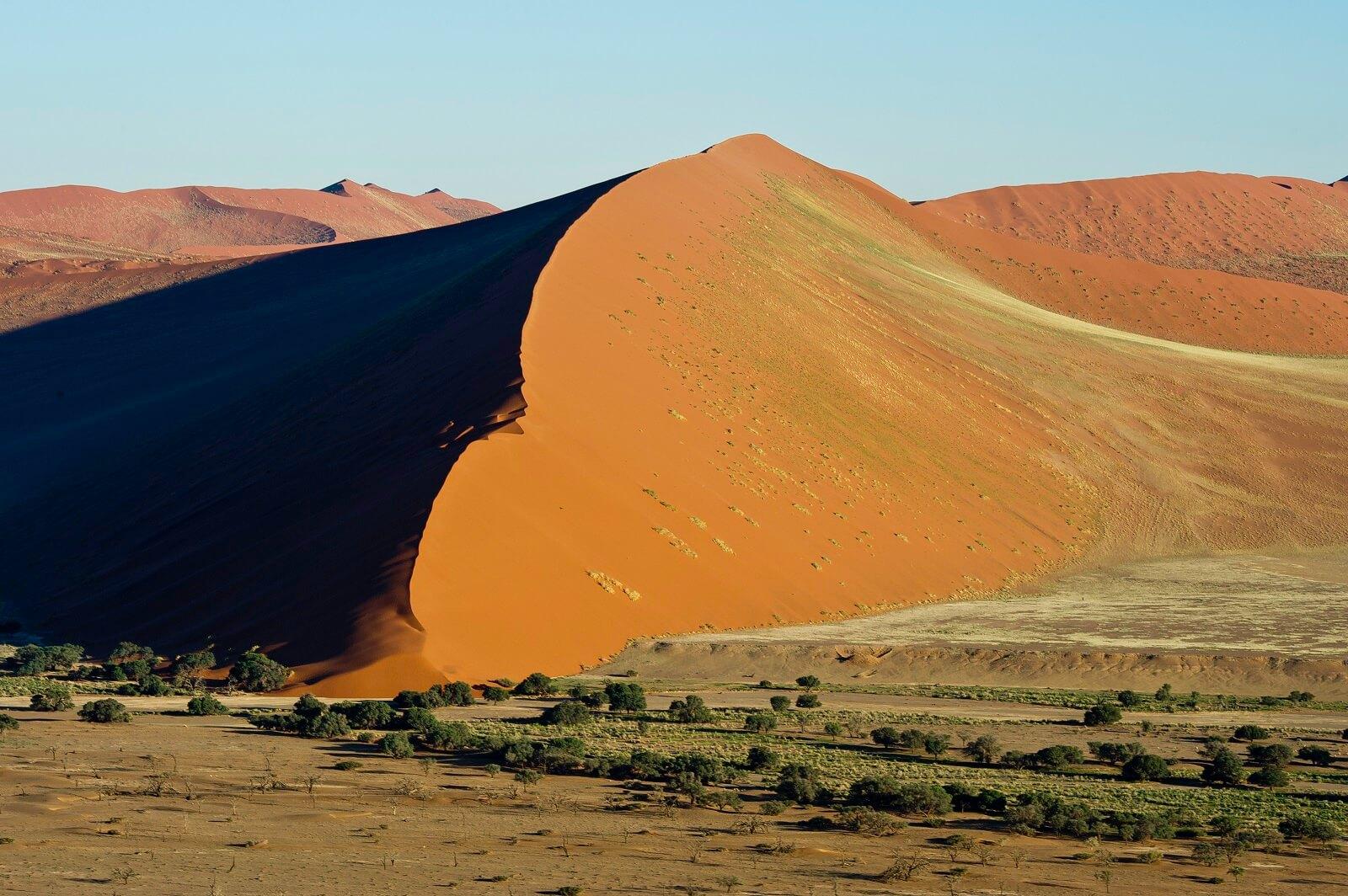 Wüste, Wüste und mehr Wüste