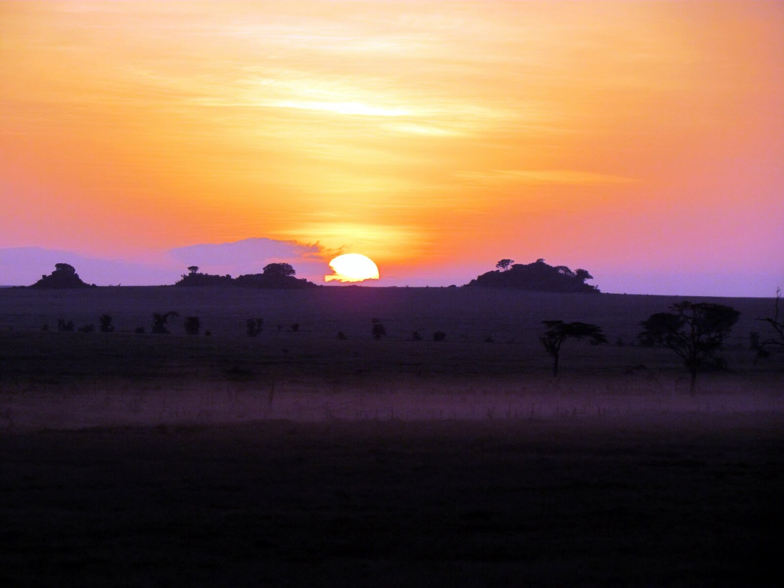 Ang'ata Serengeti