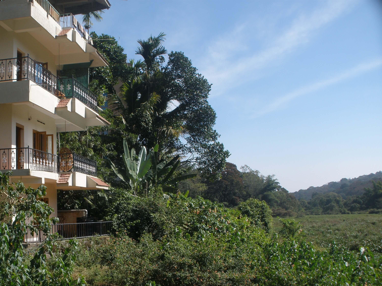 Jungle Palace Homestay