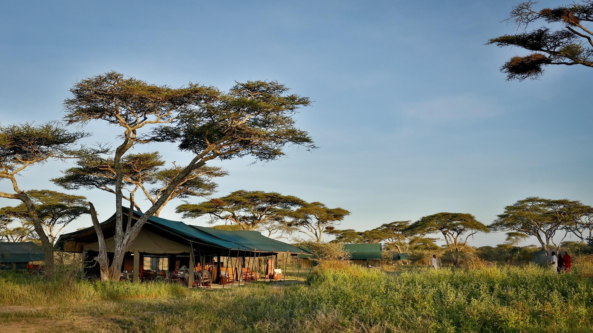 Chaka Ndutu Camp