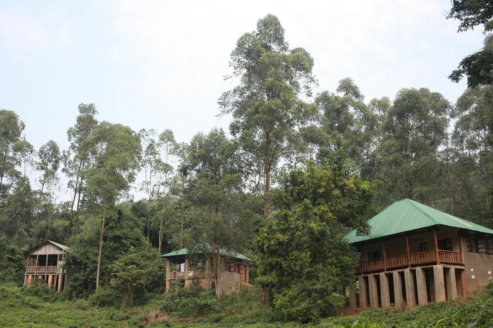 Bwindi Guesthouse
