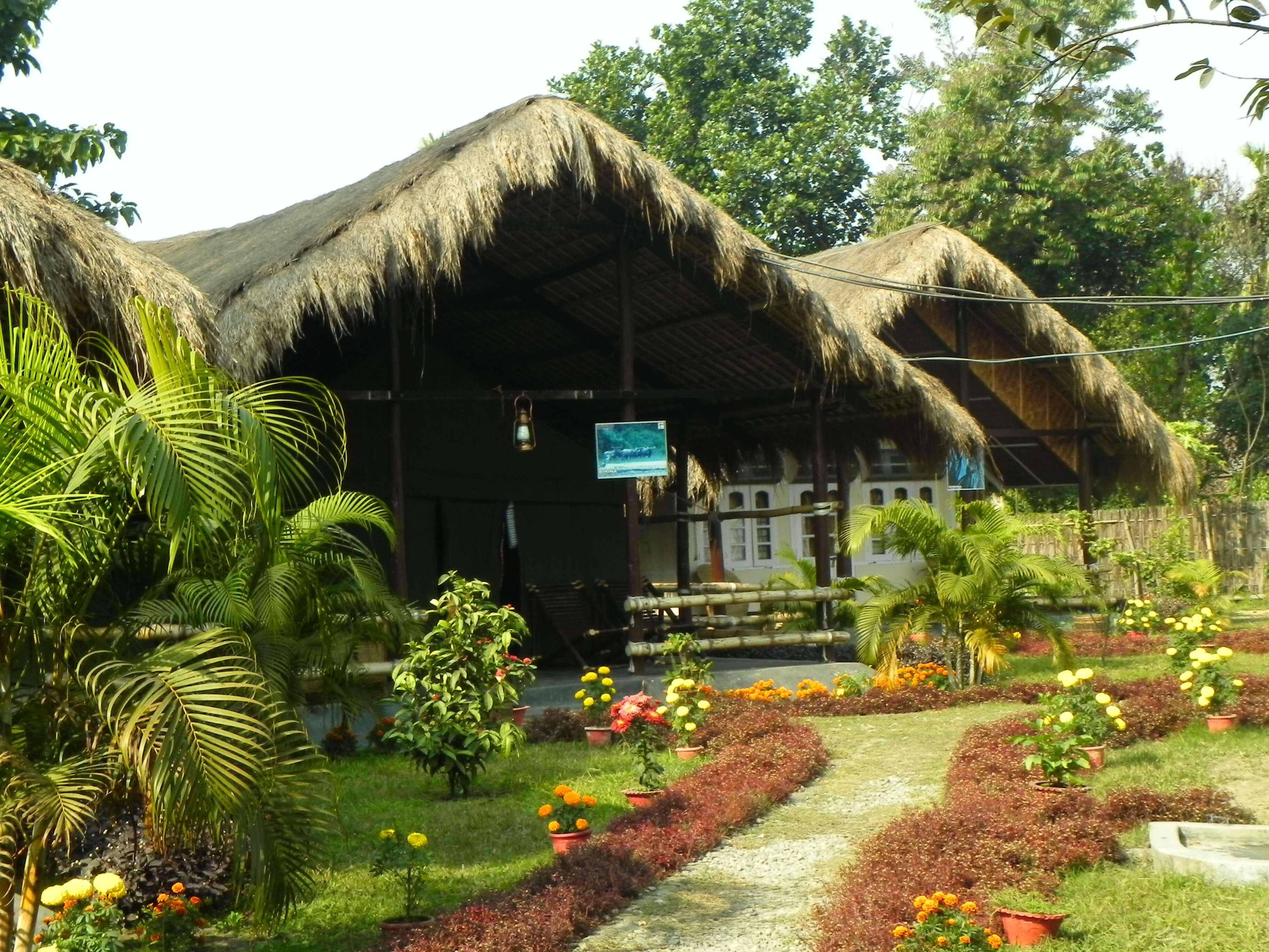 Manas Maogizendri Jungle Camp