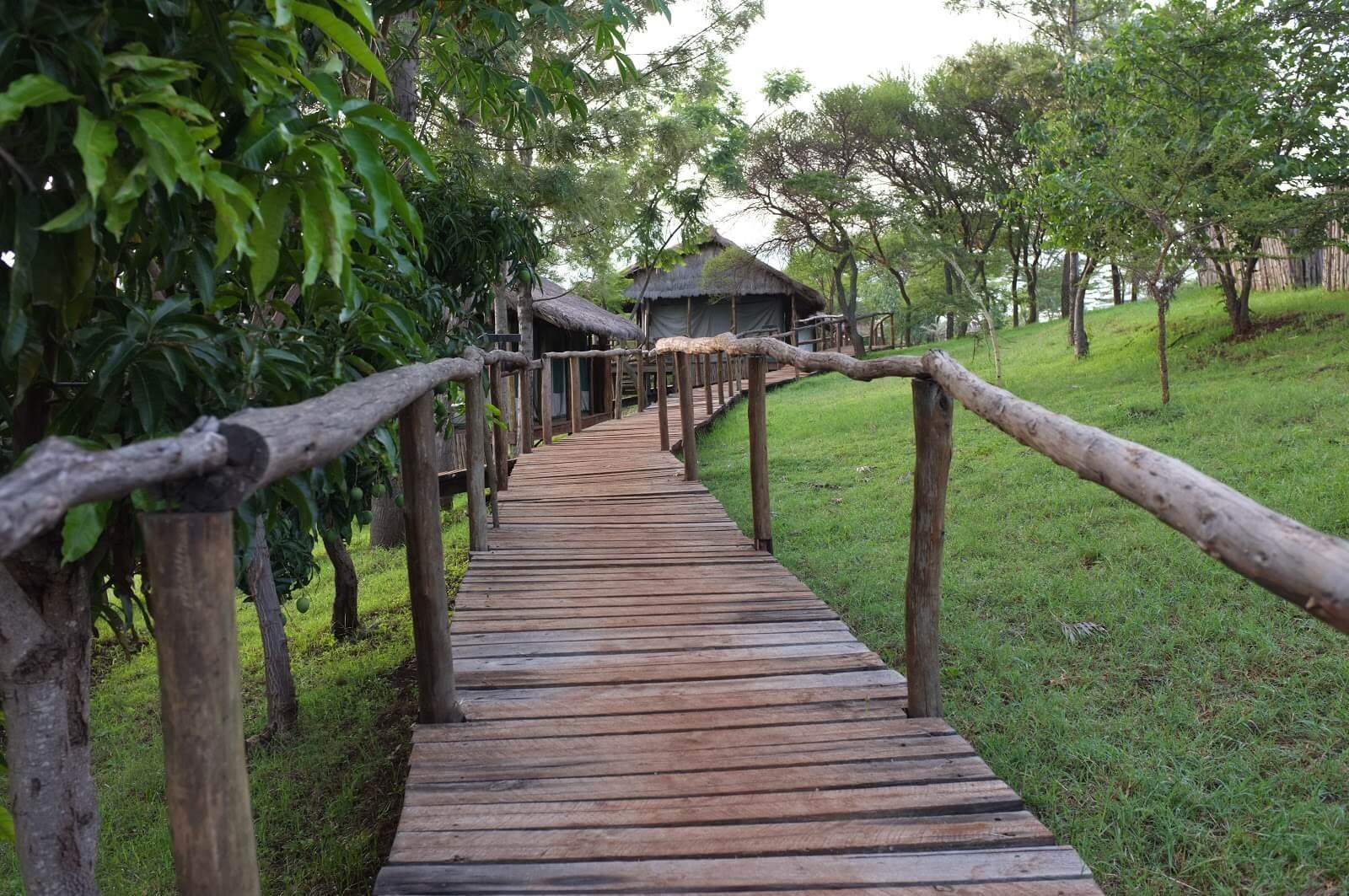 Ngorongoro Forest Lodge