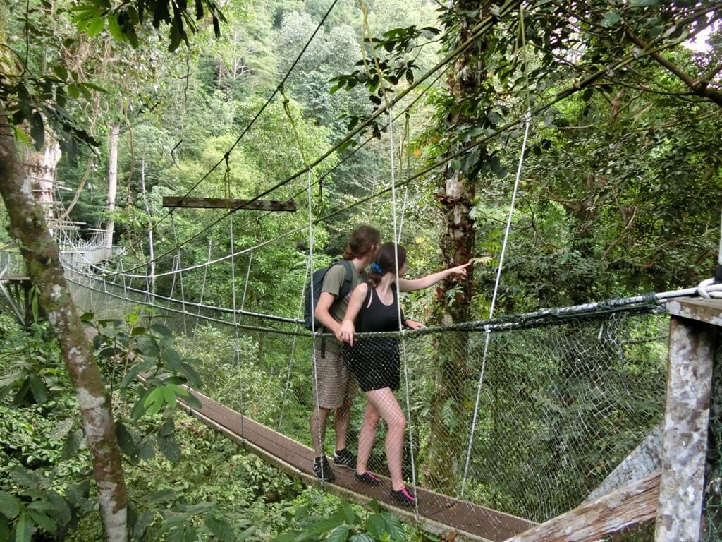 Gunung Mulu-Nationalpark