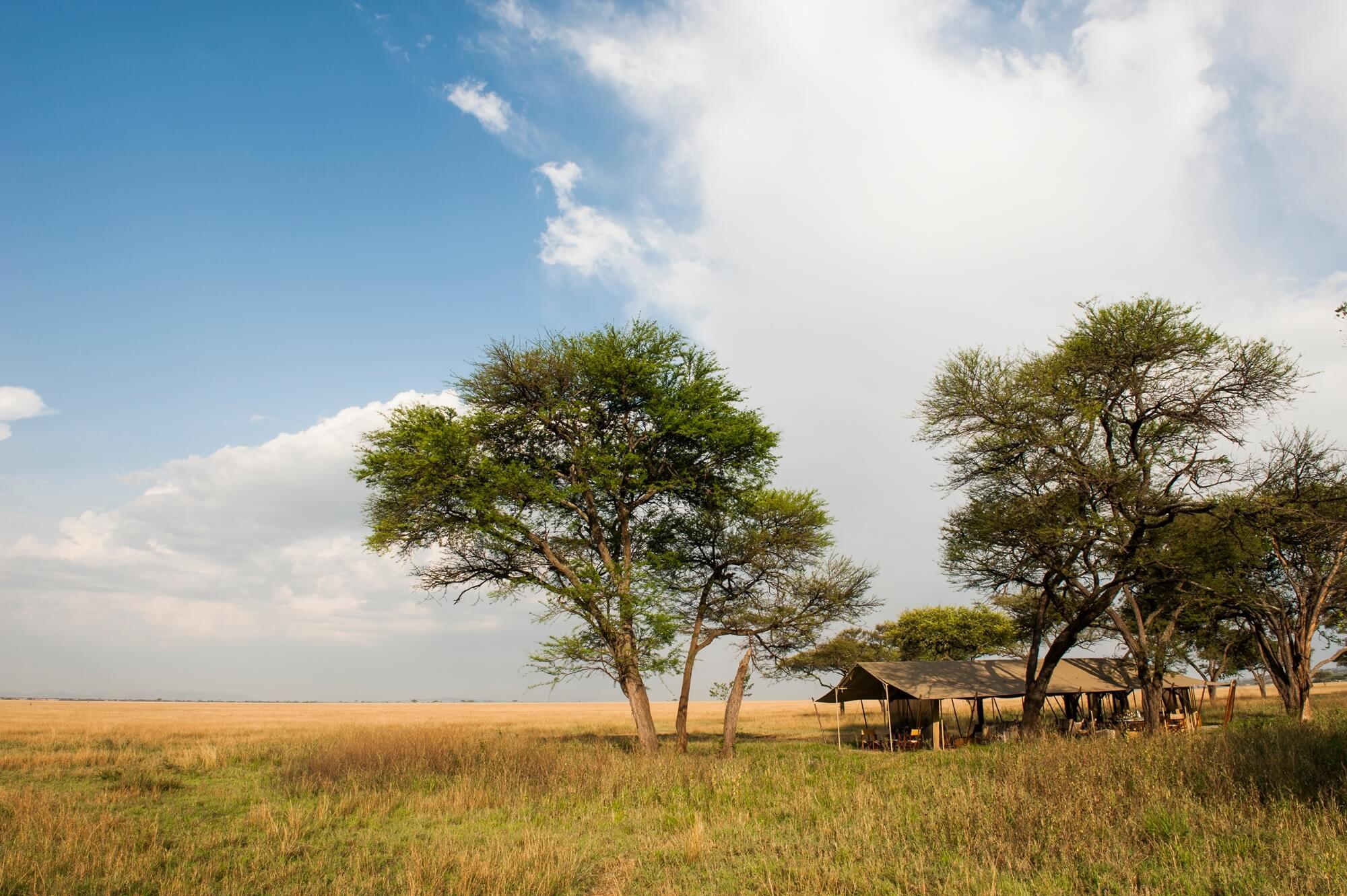 Nomad's Serengeti Safari Camp Grumeti