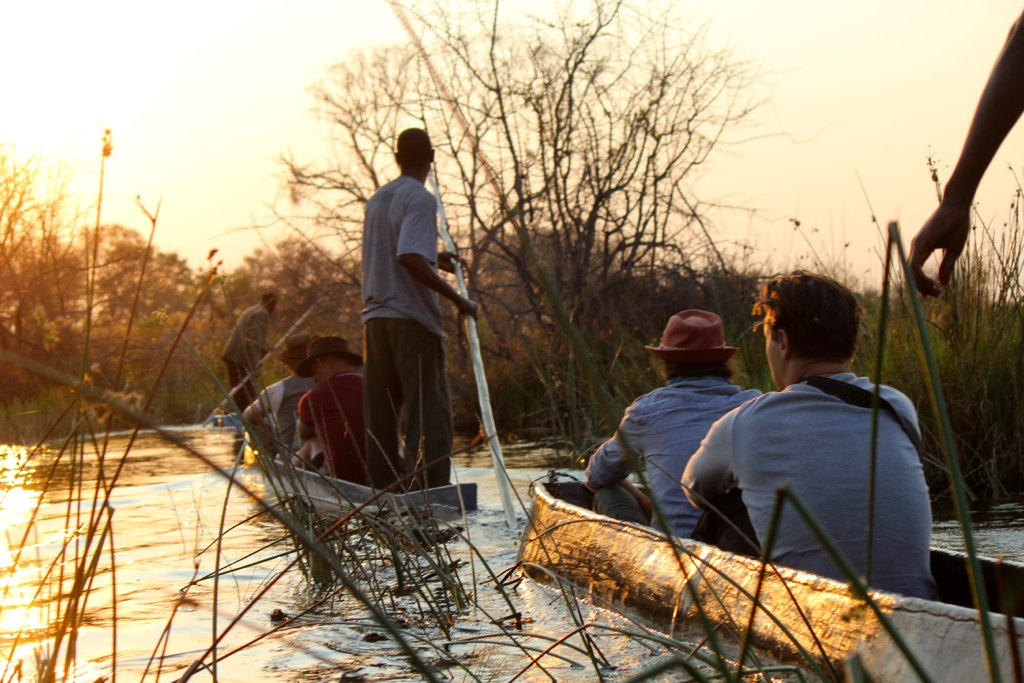 Best of Botswana