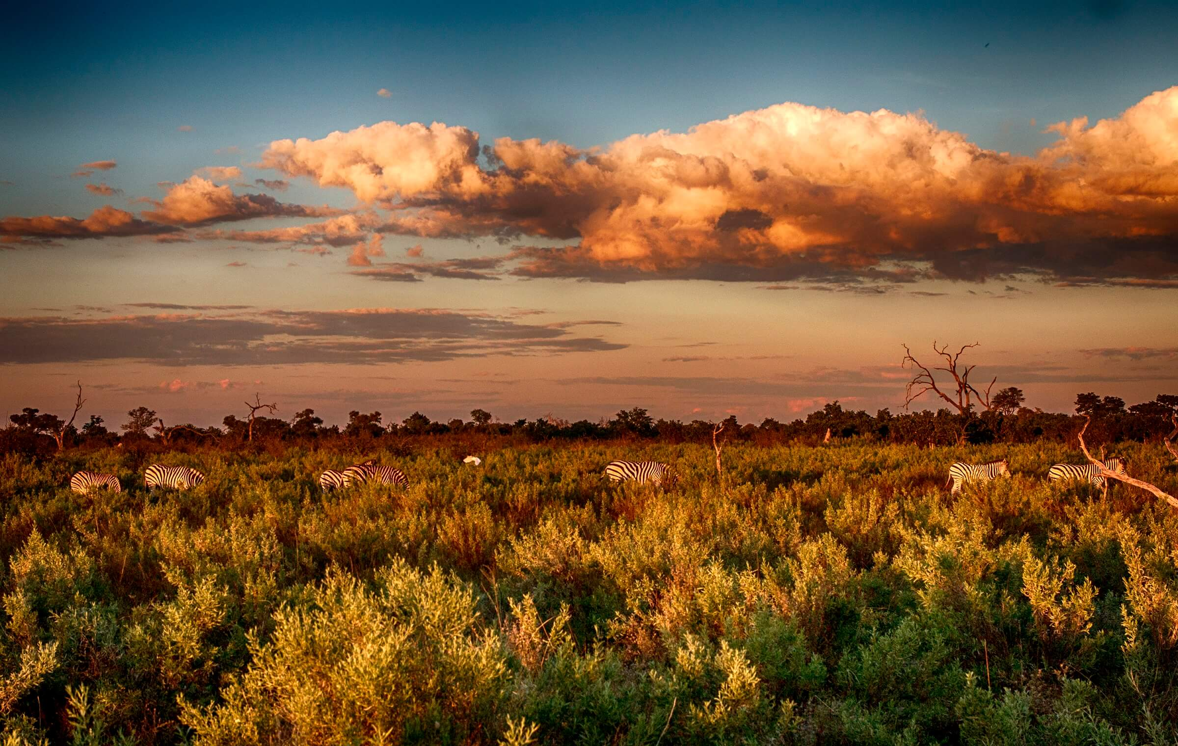 November Blues in Botswana