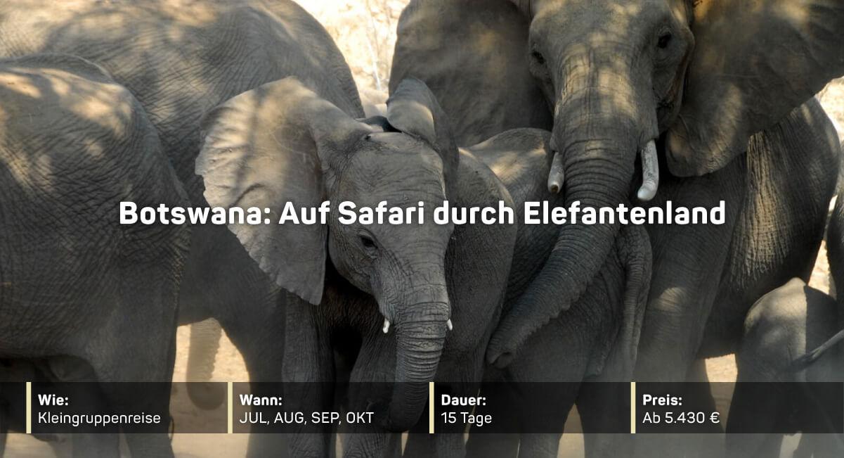Botswana: Auf Safari durch Elefantenland