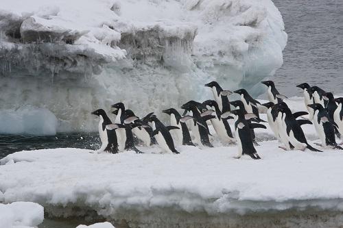 Antarktis: Der stille weiße Kontinent