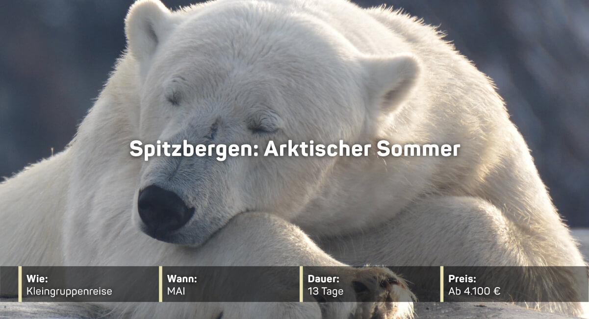 Spitzbergen: Arktischer Sommer