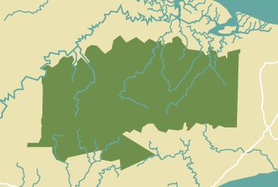 Tabin Wildlife-Reserve