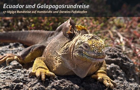 Ecuador: Auf den Spuren von Humboldt und Darwin