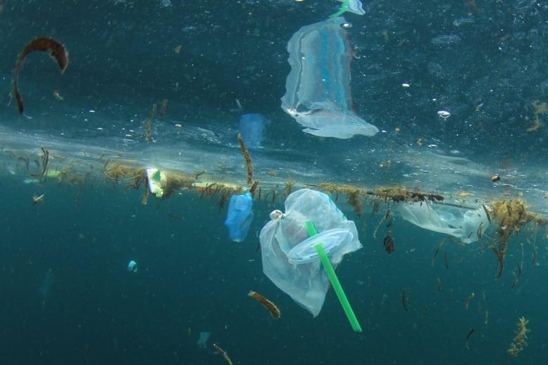 Drastisches Verbot von Plastiktüten in Tansania ab dem 01. Juni 2019